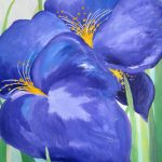 Irises by Heather Pastro