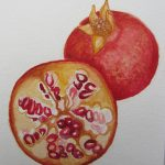 Pomegranate by Nancy Kirk